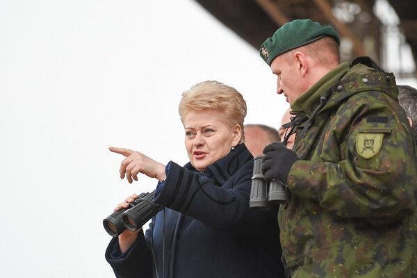 """Министр обороны Литвы Кароблис - Полтораку: """"Необходимо увеличить численность инструкторов, которые обучают украинских военнослужащих"""" - Цензор.НЕТ 5086"""