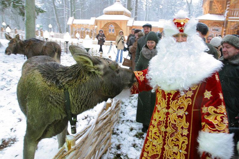 Сколько стоят экскурсии в белоруссии в 2017 году