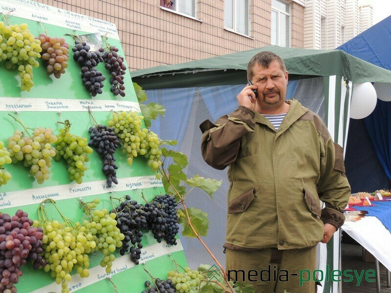 журнал хозяин 2013 приложение мой виноград