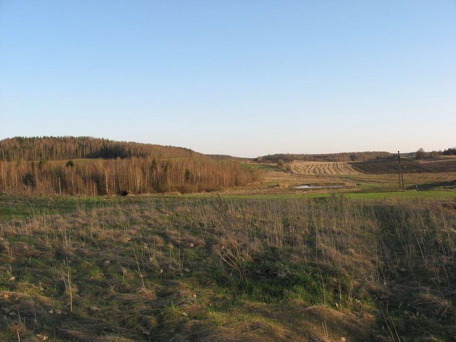 Так сейчас выглядит местность, где когда-то упал метеорит. Фото это и ниже: mapio.net