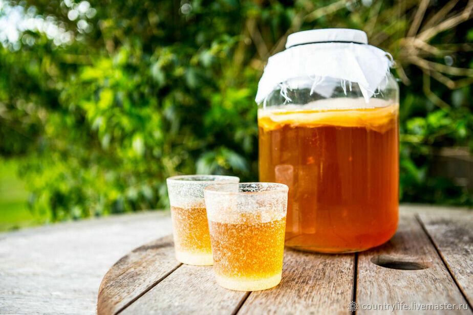 00 re749 - Популярный в советские времена чайный грибтеперь в тренде во всем мире