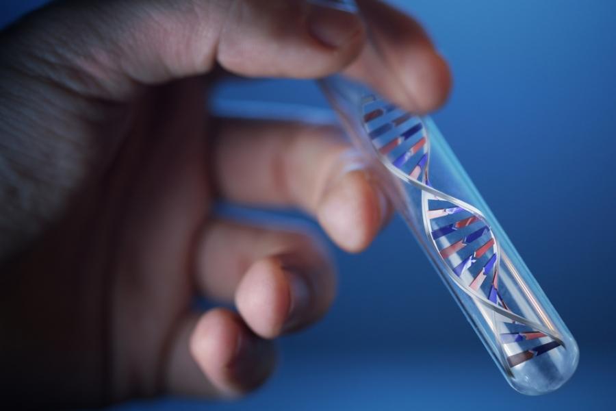 поиск ДНК микоплазмы