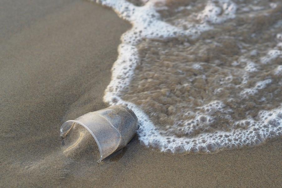 Упаковка от еды и напитков на вынос — основной источник пластикового м